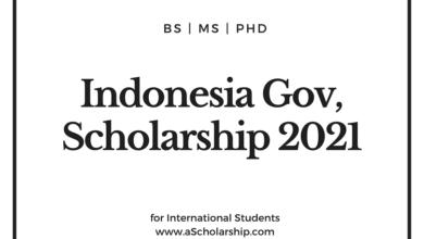 Indonesian Daramasisva Government Scholarship